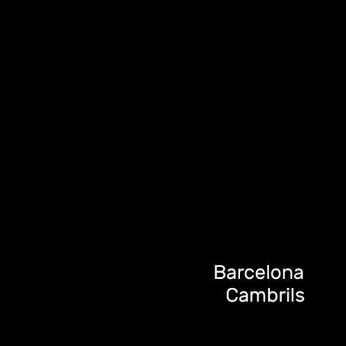 Anduluplandu | barcelona i cambrils